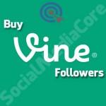 Buy Vine Followers Cheap