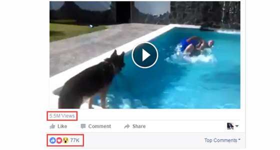 Buy Facebook Video Post Likes & Facebook Video Views